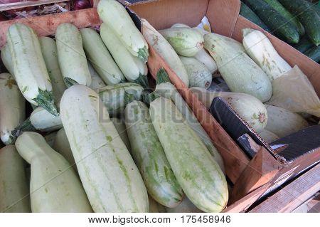 Fresh white zucchini at the market in Bar-city, Montenegro