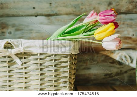 tulips in wooden backet. old baskground .