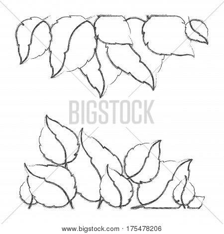 monochrome sketch set of leaves in two rows vector illustration