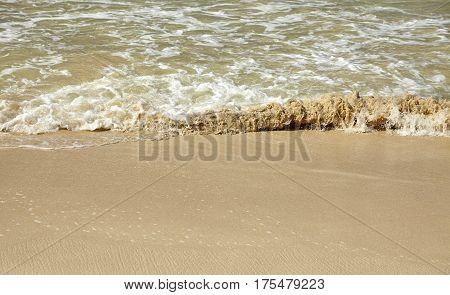 Exotic Tropical Island Sandy Beach And Surf Closeup