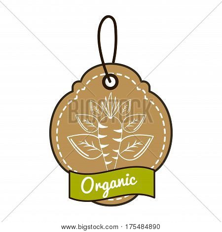 emblem vegetarian food icon stock, vector illustration design image