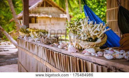 Bamboo Hut wih Sea Mussels and Corrals on Parapet of an Homestay on Gam Island, West Papuan, Raja Ampat, Indonesia.