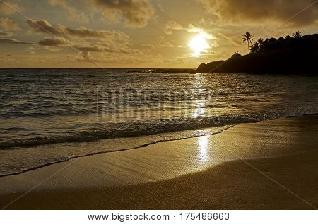 Golden Hawaiian Island Sunset On The Beach