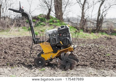 Garden tiller to work tractor cultivating field at spring loosens soil by petrol cultivator side view