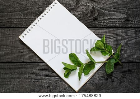 Medicinal plant mint (Mentha spicata) and notebook to write recipes and methods of application. Used in aromatherapy phytotherapy SPA healthy and vegetarian food