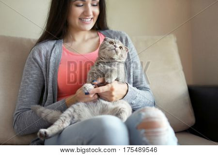 Young woman sitting on sofa with cat on knees