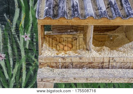 Three fresh eggs lying in an artsy painted handmade chicken coup farm and healthy lifestyle scene