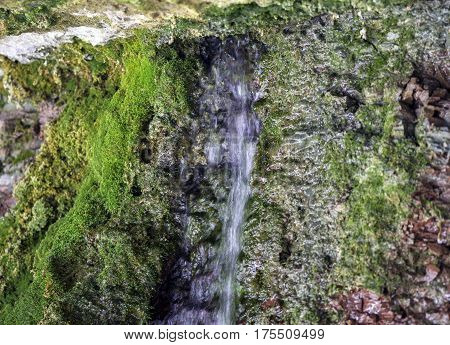 Closeup of small stream of water flowing from mountain shallow cave overhang moss and red rocks