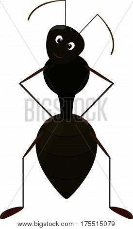 Cute blsck Ant cartoon Character isolated on white