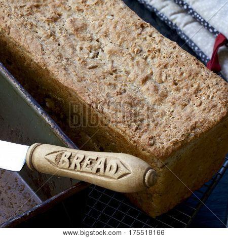 Fresh loaf of homemade spelt bread fresh from the oven.