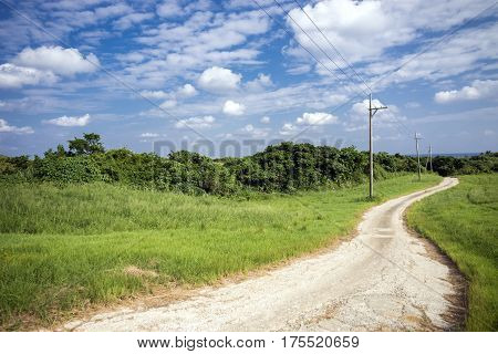 Winding small road through green grassy plains under sky