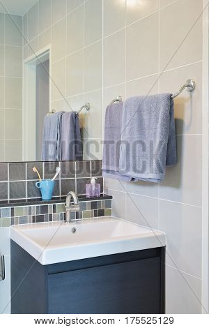 Towel Rail Next To Lavatory With Toothpastes  In Modern Decorative