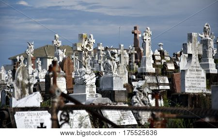 Sydney, Australia - Feb 5, 2017. Waverley Cemetery is a state heritage listed cemetery in an iconic location in Sydney. It is noted for its largely intact Victorian and Edwardian monuments.