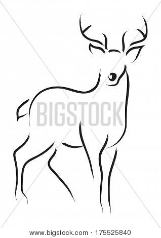 Simple line art illustration of a deer
