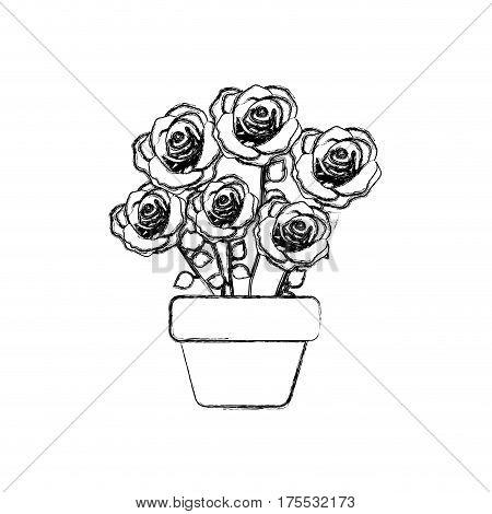 figure roses inside flower pot icon, vector illustraction design