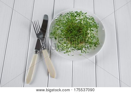 Portion of fresh Garden Cress  on  white wooden background. Healthy vegetarian food.Fresh herbs.