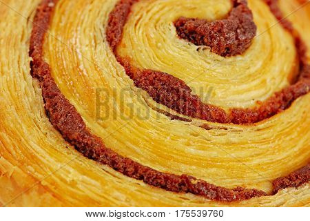 baked cinnamon spiral danish pastry close up