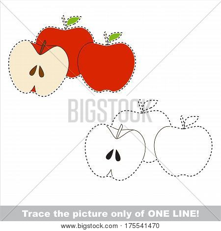 Three Apples with Apple Half Slice to be traced only of one line, the tracing educational game to preschool kids with easy game level, the colorful and colorless version.