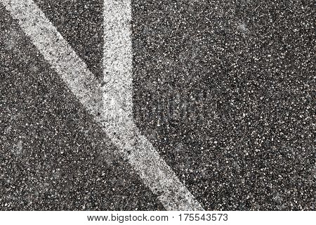 Corner Of White Lines On Asphalt