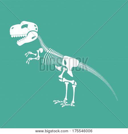 Skeleton Dinosaur Isolated. Dino Bones. Tyrannosaurus Skull. Prehistoric Reptile