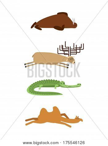 Sleeping Animals Set 1. Seal And Moose. Crocodile And Camel. Wild Animal Sleeps. Sleepy Beast