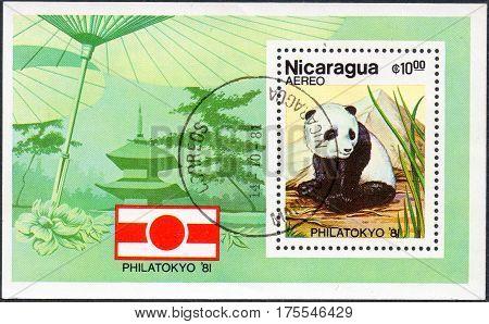 UKRAINE - CIRCA 2017: A stamp printed in Nicaragua is dedicated to PHILATOKYO-81 shows panda circa 1981