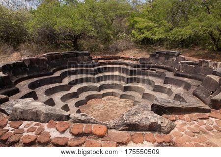 Lotus pool in Polonnaruwa or Pulattipura ancient city Kingdom of Polonnaruwa in Sri Lanka horizontal