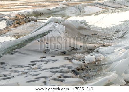 Ice Bound Lagoon
