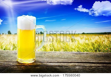 Draught beer on wooden table in front of cereal field