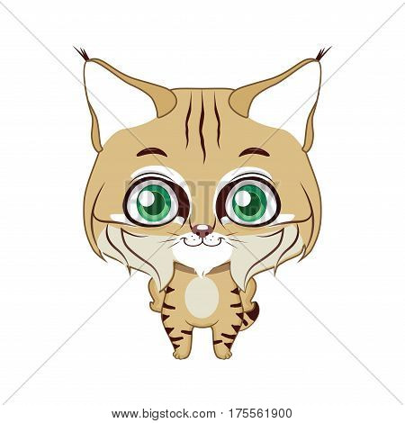 Cute stylized cartoon bobcat illustration ( for fun educational purposes, illustrations etc. )