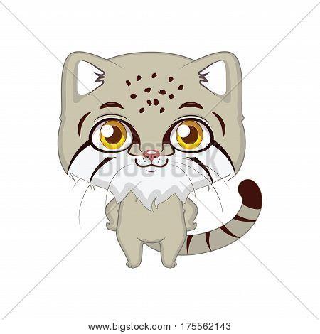 Cute stylized cartoon pallas's cat illustration ( for fun educational purposes, illustrations etc. )