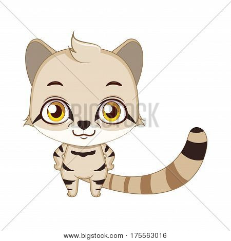Cute Stylized Cartoon Andean Mountain Cat Illustration