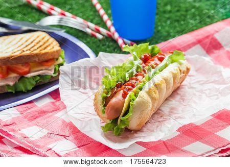 Hotdog with big sausage and fresh lettuce for picnic