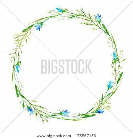 Wreath of a meadow herbs and bluebell flowers. Garland of a spike and timothy grass. Watercolor hand drawn illustration.