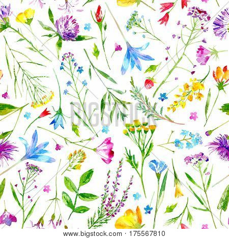 Floral seamless pattern of a wild flowers and herbs on a white background.Buttercup,cornflower,clover,bluebell,forget-me-not,vetch,grass,lobelia,snowdrop flowers. Watercolor hand drawn illustration.