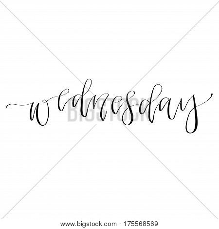 Wednesday - hand drawn isolated lettering. Day of the week. Hand written calligraphy. Vector illustration.