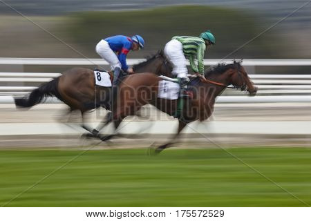 Horse race final rush. Competition sport. Hippodrome. Winner. Speed background