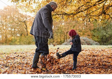 Grandfather And Granddaughter Kicking Leaves On Autumn Walk