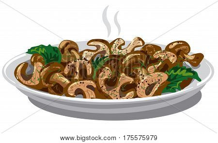 illustration of cooked fried boiled mushrooms in plate