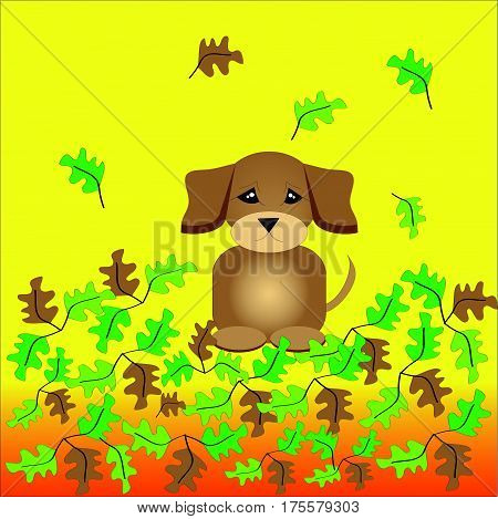 Colored leafs with sitting puppy on on yellow - orange background. Vector Illustration.