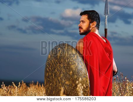 Ancient fighter. Rear view shot of a handsome bearded young Greek warrior in a red cape standing in the field armed with a spear and a shield. heroic concept.