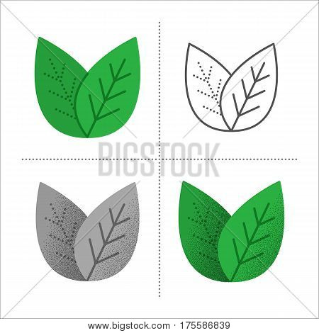 Set of leaves icons in different styles: retro, flat, thin line, black and white with vintage texture. Green tea, mint or tree leaf - nature, eco, health or natural symbol. Vector illustration.