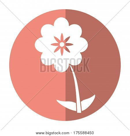 canna flower decoration image shadow vector illustration eps 10