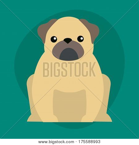 Funny cartoon dog character bread illustration in cartoon style happy puppy and bulldog isolated friendly mammal vector illustration. Domestic element flat comic adorable mascot canine.