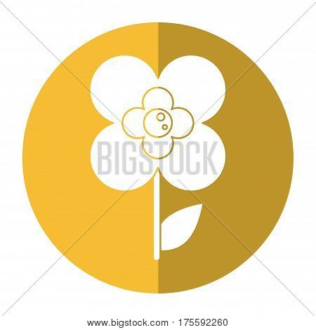 buttercup flower natural shadow vector illustration eps 10