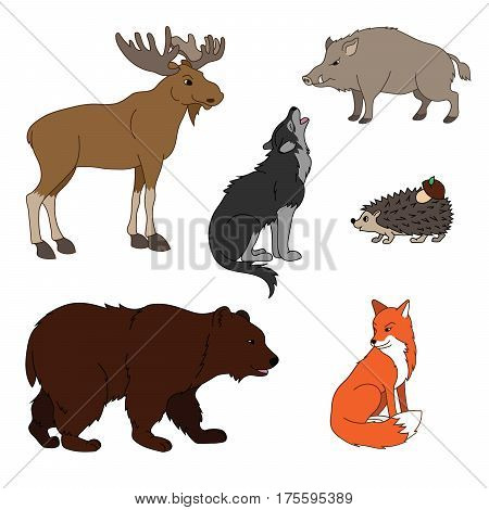 Set Of Various Cute Animals, Forest Animals. Wolf, Fox, Bear, Wild Boar, Moose, Hedgehog. Vector Ill