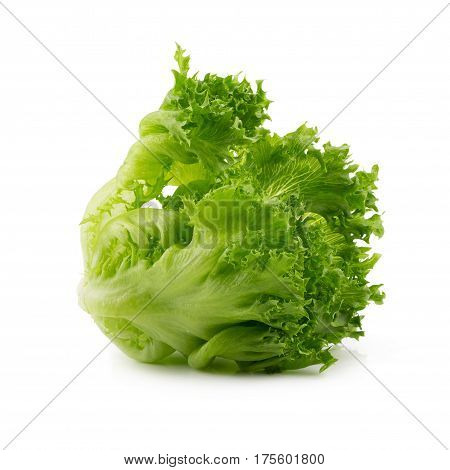 Green Frillies Iceberg Lettuce On White Background.