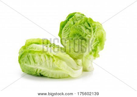 Romain Lettuce Isolated On A White Background.