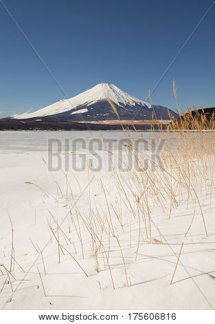Lake Yamanaka with snow fall and Mount Fuji in winter season. Lake Yamanakako is the largest of the Fuji Five Lakes .