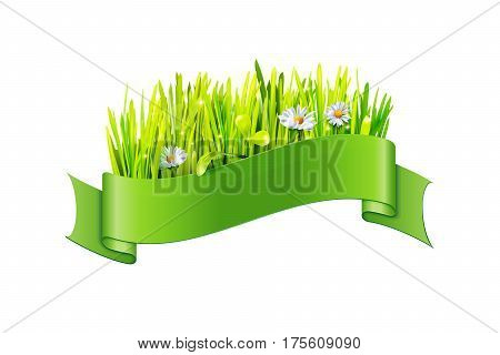 Vector grass and flowers in green ribbon isolated on a white background. Element for celebration design.